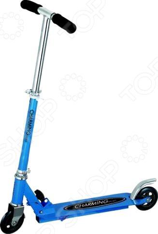 Самокат WeiChao CMS001 скейтборд балансировочный weichao cmw002