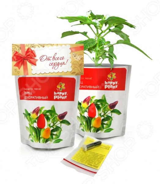Набор для выращивания Happy Plant «Перец декоративный»