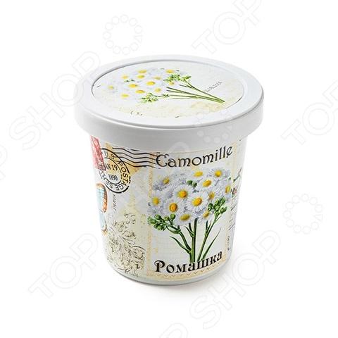Набор для выращивания Rostokvisa «Ромашка» наборы для выращивания rostokvisa набор для выращивания настурция