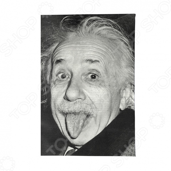 Обложка для паспорта Mitya Veselkov «Эйнштейн»
