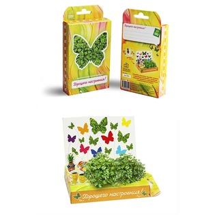 Купить Набор подарочный для выращивания Happy Plant «Живая открытка: Поздравляю-Хорошего настроения!»