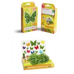 фото Набор подарочный для выращивания Happy Plant «Живая открытка: Поздравляю-Хорошего настроения!»