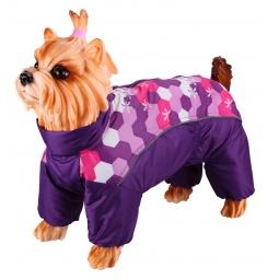 фото Комбинезон-дождевик для собак DEZZIE «Китайская хохлатая». Цвет: фиолетовый