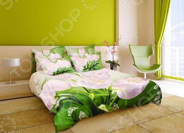 Комплект постельного белья с эффектом 3D Buenas Noches Belie Tulpani. 2-спальный2-спальные<br>Buenas Noches Belie Tulpani. Satin 3D это комплект постельного белья нового поколения , предназначенного для молодых и современных людей, желающих создать модный интерьер спальни и сделать быт более комфортным. Белье из великолепной сатиновой ткани станет украшением любой спальни. Главной особенностью модели является эффект 3D, который буквально оживляет изображенные цветы, привнося невероятную атмосферу в помещение. При изготовлении постельного белья Buenas Noches используются устойчивые гипоаллергенные красители. Основой для ткани служит натуральный хлопок. Специальный станок изготавливает из тонкой пряжи прочные и гладкие нити атласного переплетения. Ткань, сделанную таким образом, легко узнать по ее особому блеску, мягкости и гладкости. Пошив, происходящий на автоматической линии, гарантирует, что размер белья будет строго соблюдаться. Благодаря уникальным потребительским свойствам, белье не теряет цвет и не садится во время стирки, а на ткани не образуются катышки .<br>