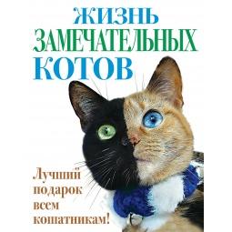 фото Жизнь замечательных котов