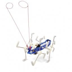 Купить Игрушка механическая Kikkerland «Сороконожка-внедорожка». В ассортименте