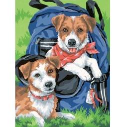 Купить Набор для рисования по номерам Dimensions «Щенки в рюкзаке»