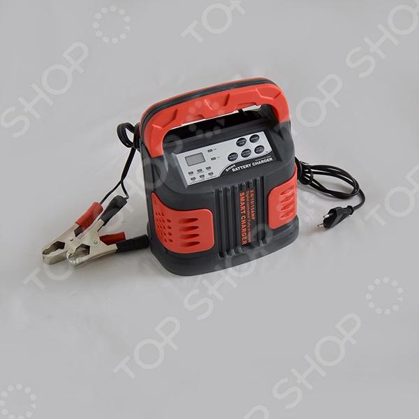 Устройство зарядное Carstel S-80150 - фото 5