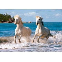 Купить Пазл 1000 элементов Castorland «Белая лошадь»