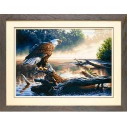 Купить Набор для рисования по номерам Dimensions «Орел-охотник»