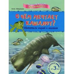 фото О чем мечтает кашалот? Обитатели морей и океанов