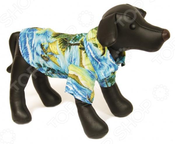 Рубашка для собак DEZZIE «Бадди» dezzie 5611186 в москве
