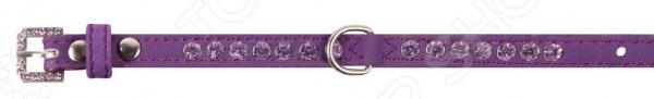 Ошейник для собак DEZZIE «Хелен» ошейник для собак dezzie балто цвет фиолетовый