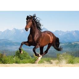 Купить Пазл 1500 элементов Castorland «Лошадь»