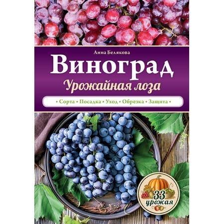 Купить Виноград. Урожайная лоза