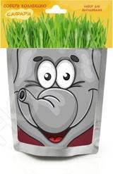 Набор для выращивания Happy Plant «Слон»