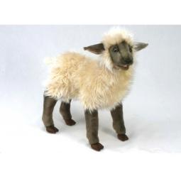 фото Мягкая игрушка Hansa «Ягненок»