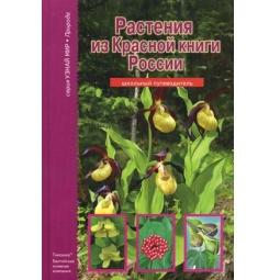 фото Растения из Красной книги России. Школьный путеводитель