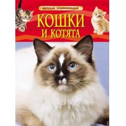 Купить Кошки и котята. Детская энциклопедия
