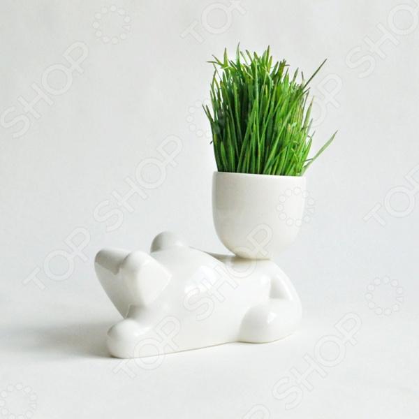 Набор для выращивания Экочеловеки Eco «Лентяй» набор для выращивания eco лентяй 1072173