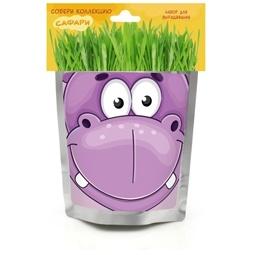фото Набор для выращивания Happy Plant «Бегемот»