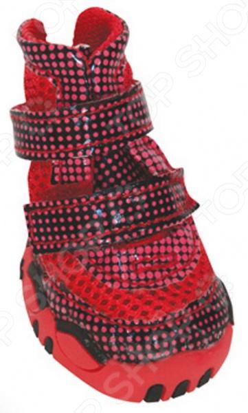Обувь для собак DEZZIE «Роуз»