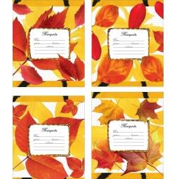 Купить Тетрадь в линейку Erich Krause «Золотая осень». В ассортименте