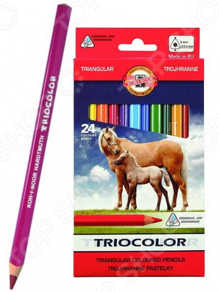 Набор карандашей цветных Koh-I-Noor Triocolor: 24 цвета