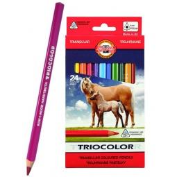 фото Набор карандашей цветных Koh-I-Noor Triocolor: 24 цвета