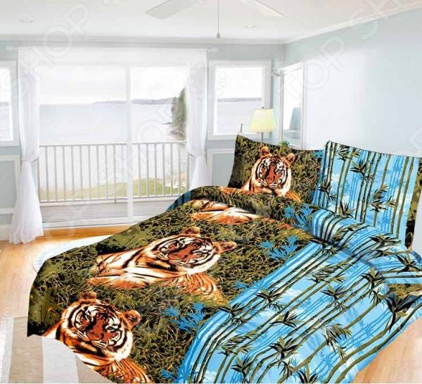 Комплект постельного белья Олеся «Бенгальский тигр» олеся мовсина про контра и цетера