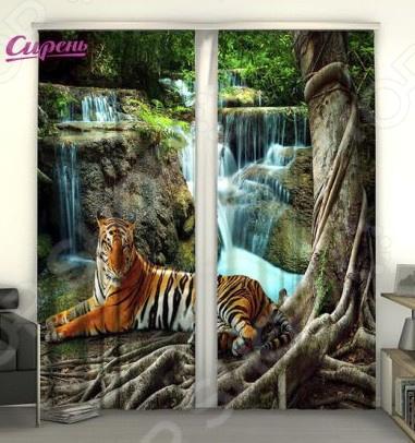 Фотошторы Сирень «Индийский тигр»Фотошторы<br>Фотошторы Сирень Индийский тигр это яркие шторы, которые помогут преобразить интерьер вашего дома! Вне зависимости от того, в какой комнате вы решили разбавить скучный дизайн, эти шторы изменят его до неузнаваемости. Даже если вы не хотите полностью изменять дизайн всей комнаты, то попробуйте добавить яркий акцент в виде штор. В производстве фотоштор используется высококачественный полиэстер, благодаря новым технологиям и краскам, которые не выгорают на солнце, эти шторы будут радовать вас долгие годы. Крепление происходит на шторную ленту под крючки. Стирать необходимо при температуре 30 градусов, после чего можно погладить, но при температуре не более 150 градусов.<br>