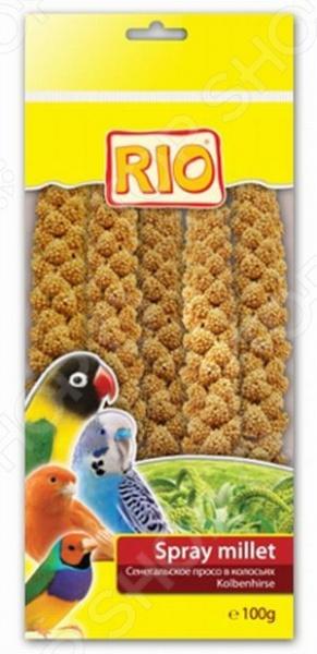 ��������� ��� ���� Rio 22070 ������������� ����� � ���������