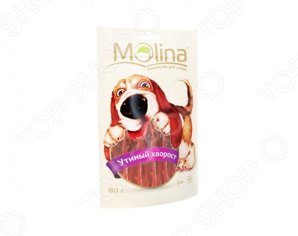 Лакомство для собак Molina 0719 Утиный хворост это вкусное и полезное угощение для вашего питомца, которое приятно грызть. Практичная форма и оптимальная текстура эффективно очищает зубы, предотвращает появление и развитие зубного камня в межзубном пространстве. Лакомство также служит надежной профилактикой заболевания десен. Утиные палочки также содержат глицин и таурин, которые благотворно влияют на кожу и шерсть питомца. Угощение идеально подходит в качестве поощрения для игр и тренировок. Лакомство для собак также способствует:  поддержанию здоровья ротовой полости;  формированию красивого экстерьера головы, за счет укрепления жевательных мышц собаки;  удовлетворению естественного жевательного инстинкта. Лакомство с утиным вкусом и ароматом выполнено из качественного и натурального мяса, без использования искусственных добавок и красителей. Это делает его абсолютно безопасным и полезным для вашего четвероногого друга, а натуральные обогатители вкуса делает его ещё и очень вкусным. Внимание! Лакомство не должно заменять собаке полноценный рацион, поэтому рекомендуется давать не более одного или двух кусочков в день. Также, не забывайте о свежей и чистой воде, которая должны быть всегда в миске вашего питомца.