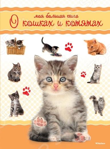 Моя большая книга о кошках и котятахЖивотные. Растения. Природа<br>Эта красочная книга посвящена домашним кошкам. На изумительных фотографиях представлены крупным планом как обычные беспородные кошки, так и представительницы редких пород, например сфинкс или бурма. Лаконичные, но информативные тексты познакомят вас с особенностями строения кошек, объяснят, почему они так любят спать и играть, а также научат угадывать их настроение по движению ушей и форме зрачков. Советы по уходу за котятами помогут вам правильно их воспитать и вырастить здоровыми, сообразительными и ласковыми.<br>
