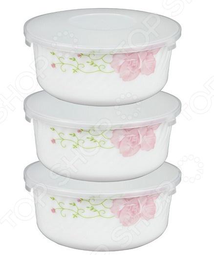 Набор контейнеров для продуктов Rosenberg 1258-2