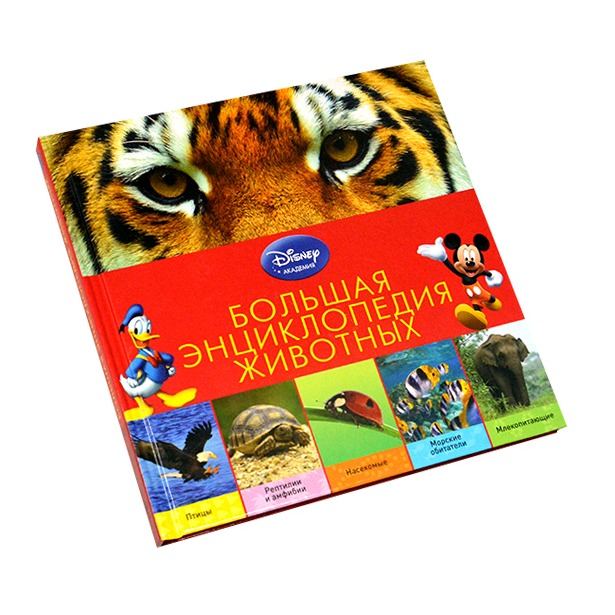 фото Большая энциклопедия животных