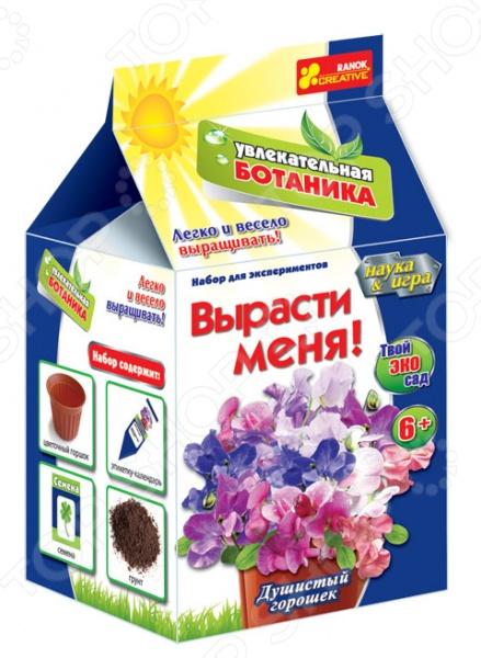 Набор для выращивания Ранок «Вырасти меня. Душистый горошек» набор для выращивания eco малыш луковка 1186609