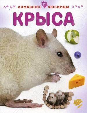 КрысаЖивотные. Растения. Природа<br>Если вы хотите купить вашему ребёнку домашнего любимца, то наш совет - купите крысу. Только сначала прочитайте малышу эту замечательную книжку, чтобы узнать, как ухаживать за умным и чистоплотным зверьком, как его развлечь, чтобы он не скучал и всегда был энергичным и здоровым.<br>