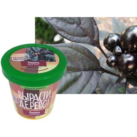 Купить Набор для выращивания Зеленый капитал Вырасти, дерево! «Перец декоративный»