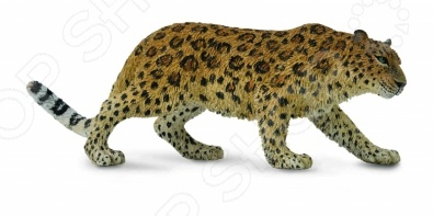 Фигурка Collecta «Амурский леопард»Игрушечные животные<br>Фигурка Collecta Амурский леопард отличный подарок не только для детей, но и взрослых. Качество исполнения и внимание к деталям делают это изделие замечательным как для игровых, так и коллекционных целей. Серия фигурок представлена многочисленными видами домашних и диких животных. Они выполнены в соответствии с производственными стандартами из нетоксичных материалов, поэтому безопасны для здоровья.<br>