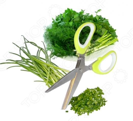 Ножницы для нарезки зелени TK 0172 с 5-ю лезвиями будут просто незаменимы на кухне, ведь они помогут хозяйкам быстро и красиво нарезать зелень, не прикладывая для этого особых усилий. Инструмент придется по душе как шеф-поварам и заядлым кулинарам, так и простым любителям сэкономить время на кухне. Теперь нашинковать укроп, петрушку будет настолько легко, что это станет любимым занятием не только хозяйки, но и ее домочадцев. Изготовлены из нержавеющей стали и прочной пластмассы, что гарантирует длительный срок службы.
