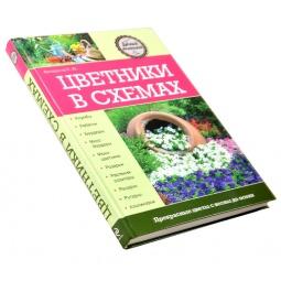 Купить Цветники в схемах