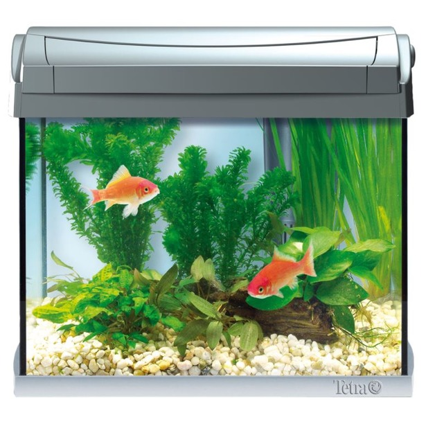 фото Аквариум Tetra AquaArt Led Goldfish