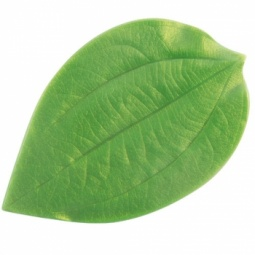 Купить Форма пластмассовая для изготовления листьев My Mind's Eye «Корица»