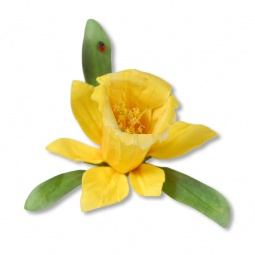 фото Форма для вырубки Sizzix Thinlits Die Нарциссы
