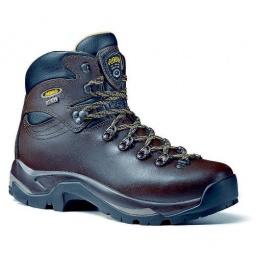 Купить Ботинки для треккинга мужские Asolo TPS 520 GV MM Chestnut (2012-13)