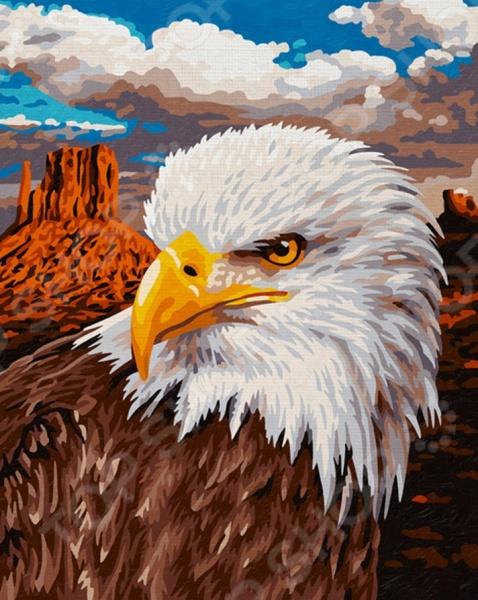 Набор для рисования по номерам Schipper «Белоголовый орлан»