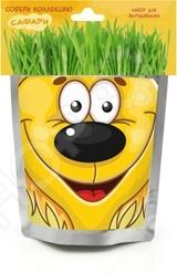 Набор для выращивания Happy Plant «Львенок»