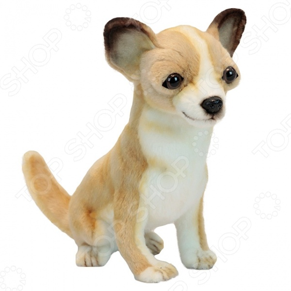Мягкая игрушка Hansa «Собака породы чихуахуа» бычки казахской белоголовой породы