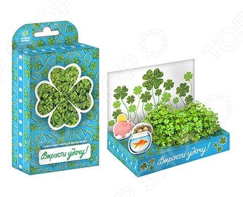 Набор подарочный для выращивания Happy Plant «Живая открытка: Поздравляю-Вырасти удачу!» наборы для выращивания happy plant подарочный набор живая открытка с любовью